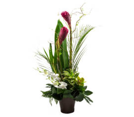 Arrangement Tropical Ginger