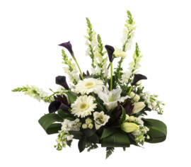 Arrangement Velours royal