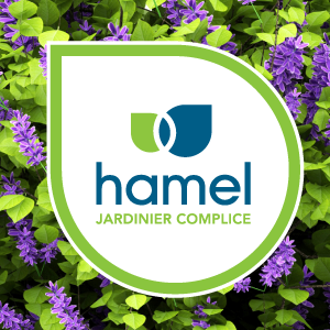 Jardin Hamel Centre Jardin Fleuriste Quebec